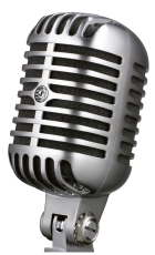lengyel bál 2019 - mikrofon